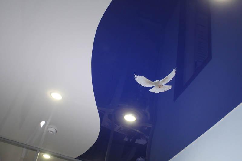 потолок с парящим голубем