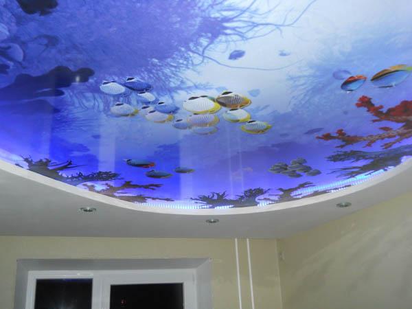 натяжной потолок в зале фото с печатью аквариум
