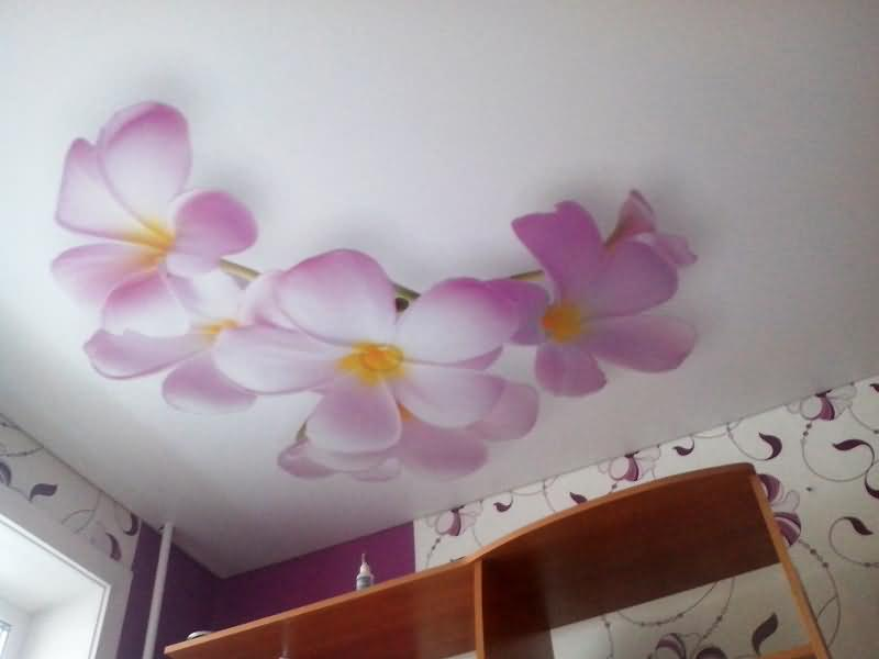Фотопечать на натяжном потолке цветы
